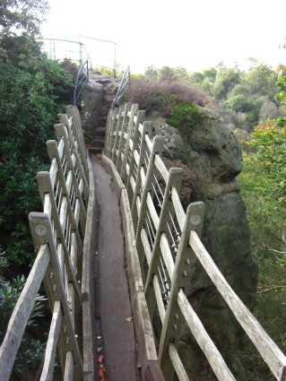 Hawkstone Swiss Bridge